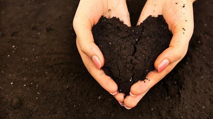Почва для гацании