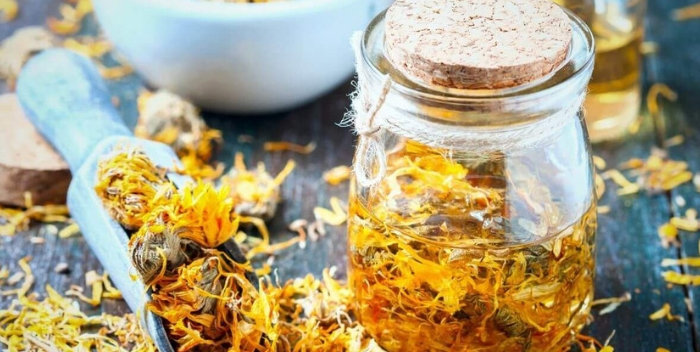 Бархатцы лечебные и полезные свойства цветов. Применение в кулинарии, косметологии, народной медицине. Польза цветов